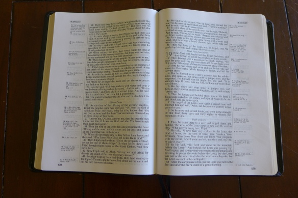 lockman foundation nasb study guide