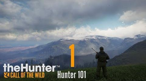 the hunter cotw graphics guide