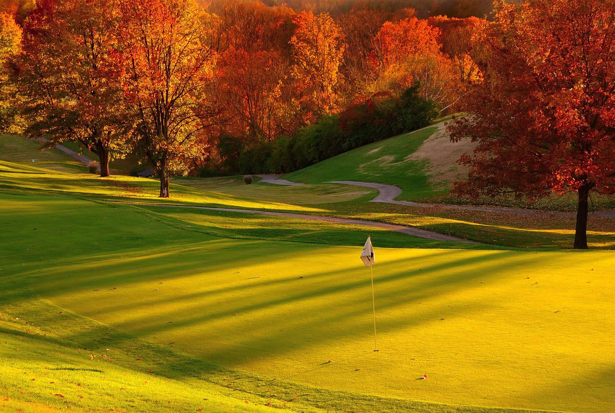 revenue canada duty guide golf club