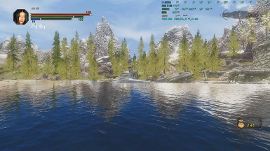 requiem install guide bashed patch