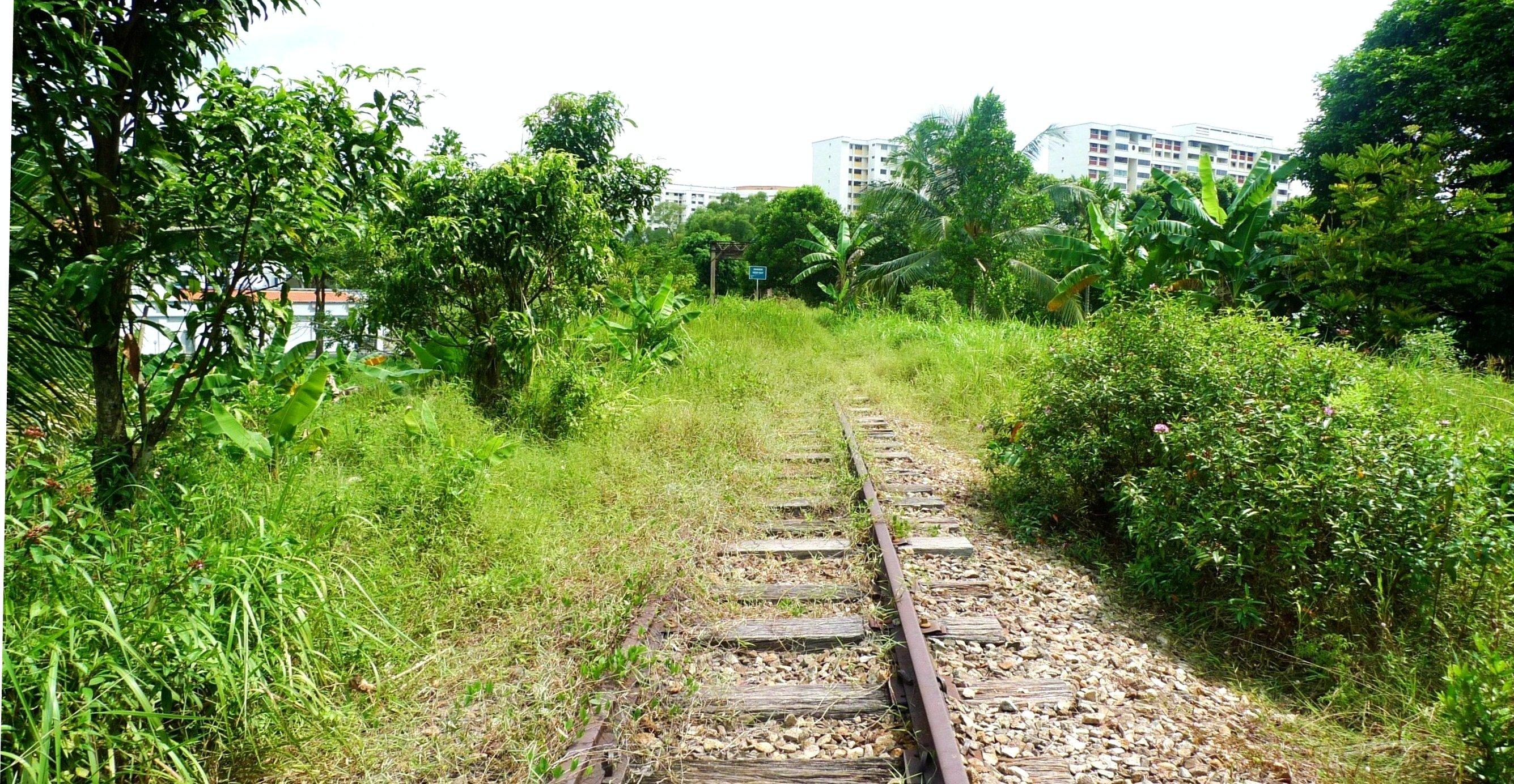singapore green corridor user guide