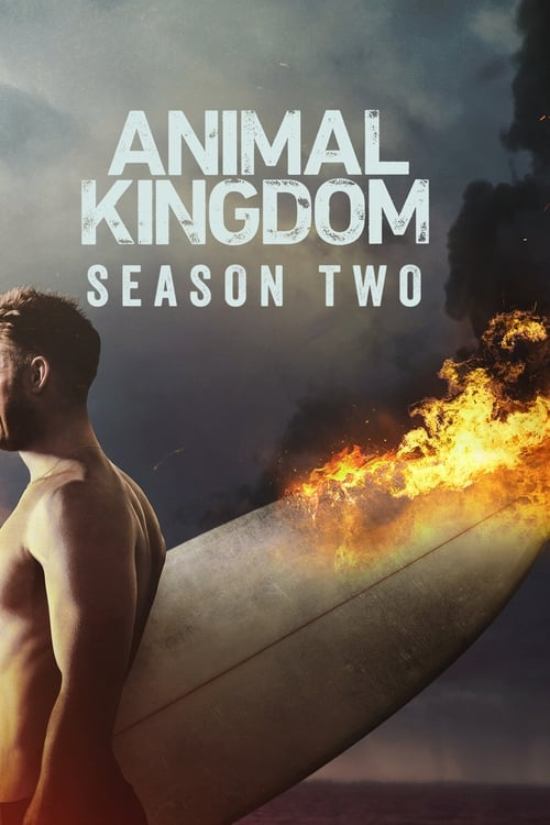 animal kingdom season 3 episode guide