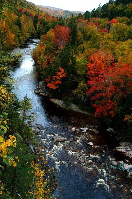 the atlantic canada nature guide